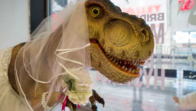 Bridezilla Museum - Experiential Marketing Agency based in NYC and Los Angeles, BeCore Experiential Marketing Agency from California